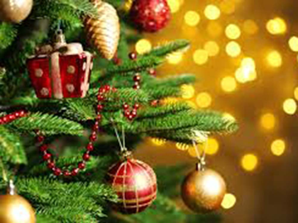 Christmas Package at The Mansion Lions Hotel - Lions Group Hotels Eastbourne and East Sussex