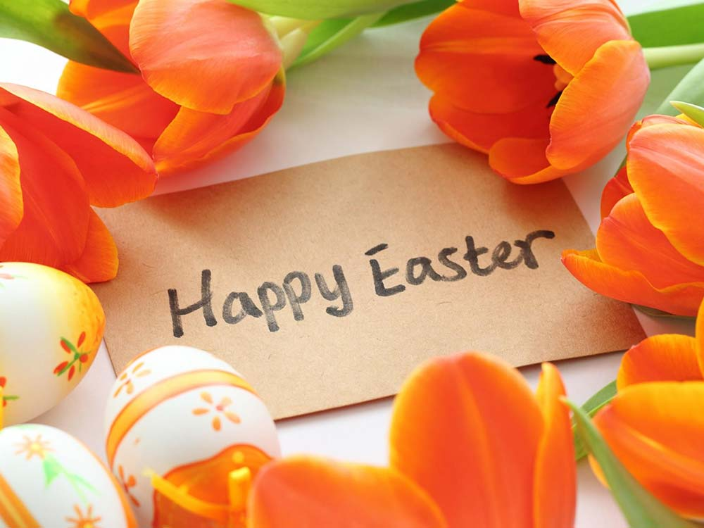Easter Package Lions Group Hotels Eastbourne and East Sussex